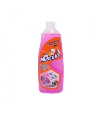MR MUSCULO GLADE APC BEBE...