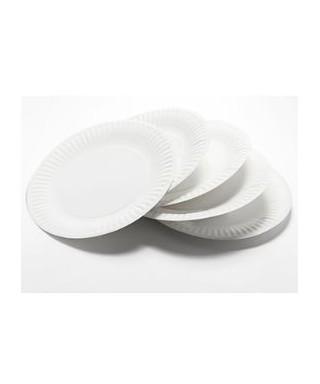 Platos plásticos