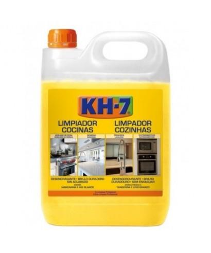 Limpiador de cocinas DISORCA 1GL