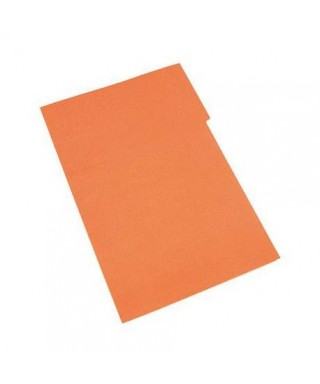 Carpeta Manila Color Naranja 1 Pieza