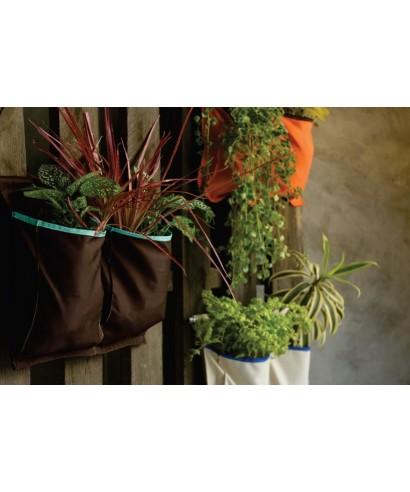 Jardines verticales Elizabeth Arte y Diseño